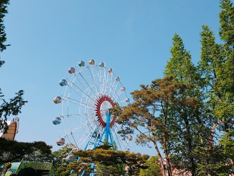 놀이공원, 경주월드