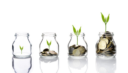 Coins And Plants In Jars Over White Background