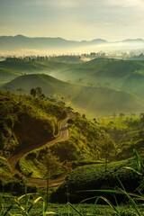 Obraz Scenic View Of Landscape Against Sky - fototapety do salonu