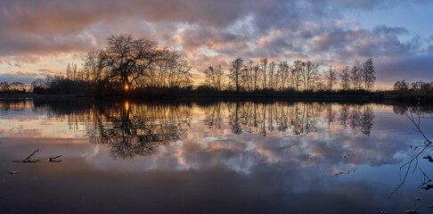 scenic vivid sunset panorama of a row of leafless trees reflecting in the tranquil water of a pond