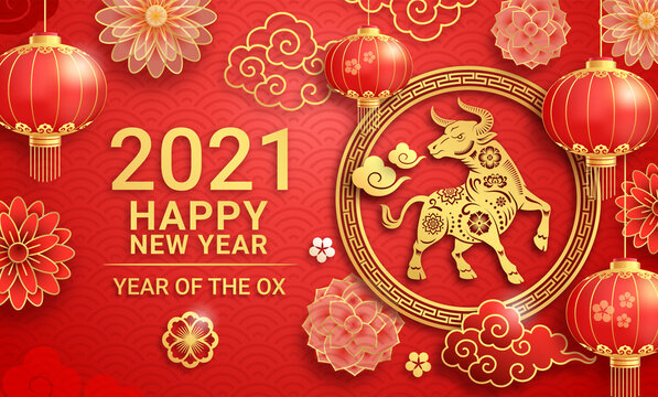 Chinese new year 2021 greeting card background the year of the ox. Vector illustrations.