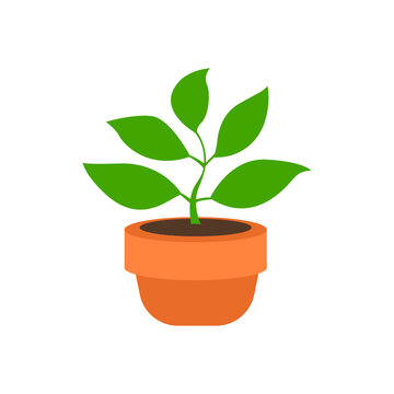 Potted Plant emoji vector