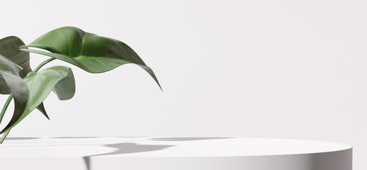 White product display podium with nature leaves. 3D rendering - fototapety na wymiar