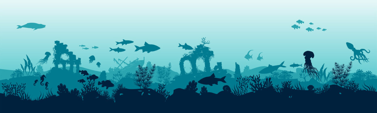 Underwater landscape with fishes. Panoramic view of the seabed.