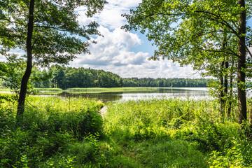 droga leśna, drzewa, dzika przyroda, forest, jesień, krajobraz, landscape, lasy, mazurski krajobraz, mazury, słońce, wildlife, zieleń, słońce, jezioro, lake, warmia, tafla jeziora, promyk słońca