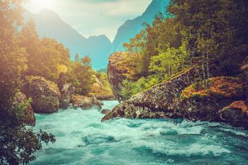 Wall Mural - Scenic Pristine Alpine River