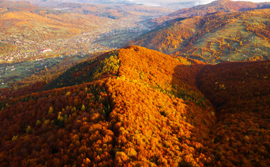 Wall Mural - Fantastic aerial photography of the autumn forest in the mountains.