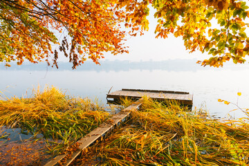 Wall Mural - Picturesque morning view through the autumn forest to the lake.