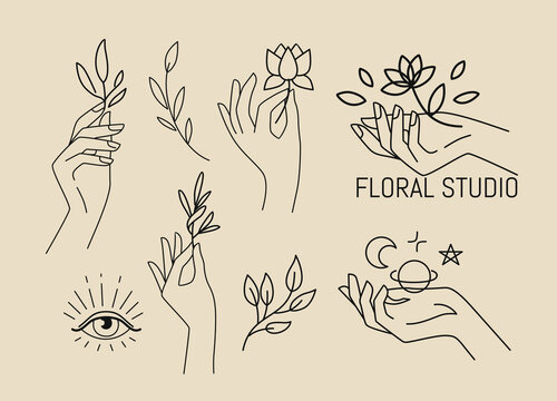 Female hands with leaves and flower. Emblem for spa beauty salon and natural products