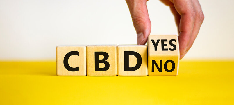 Yes or no to CBD, cannabidiol symbol. Hand turns the cube and changes words 'CBD no' to 'CBD yes'. Beautiful white background, copy space. Medical and CBD cannabidiol yes or no concept.