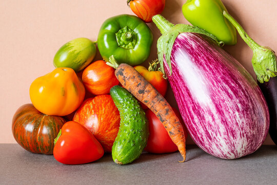 Still life fresh vegetables. Farm tomatoes of various grade, bell peppers, cucumber carrot and aubergine on a pink gray background