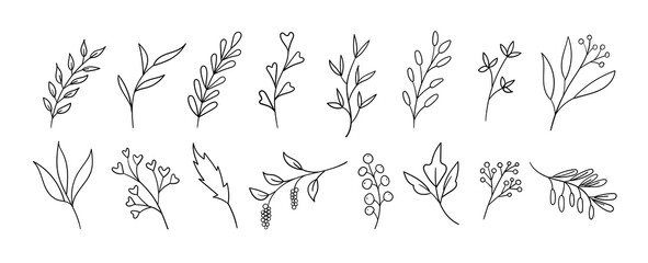 Hand drawn floral elements. Vector ink doodle leaves, branches, plants. Line art Wall mural