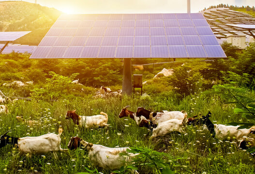 The construction of solar photovoltaic in the countryside