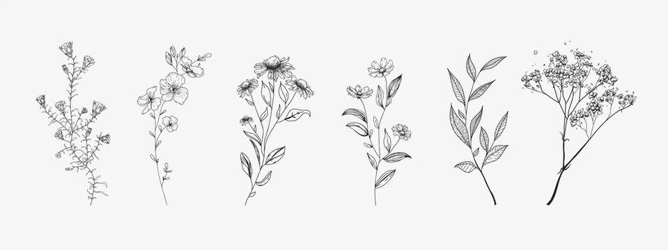 Set of wildflowers. Sketch style.