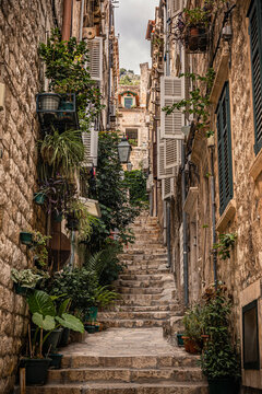 Croatia, Dubrovnik, Steps and plants on narrow alley in old town
