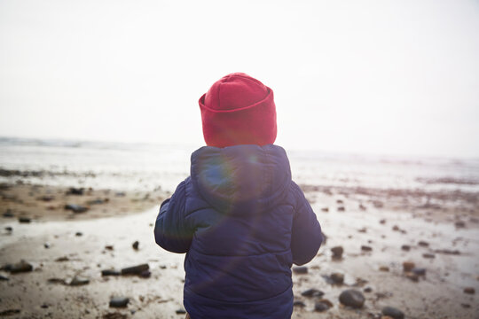 Rear view of male toddler on beach gazing at sea