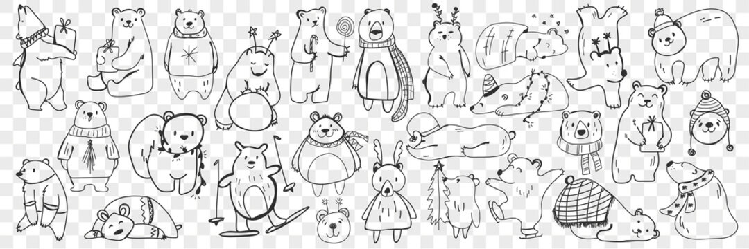 Polar and teddy bear doodle set. Collection of hand drawn funny bears in scarves and accessories doing sport, sleeping, enjoying life isolated on transparent background. Illustration of bear for kids