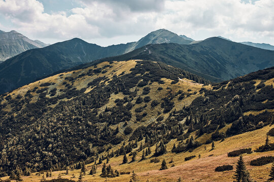 Tatra Mountains landscape. Scenic view of mountain rocky peaks, slopes, hills and valleys covered with grass, mugo pine and trees