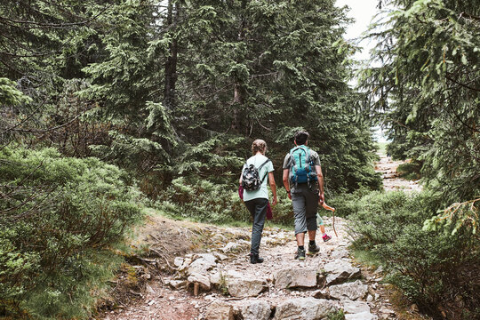 Family with backpacks hiking in a mountains actively spending summer vacation together walking on forest path talking and admiring nature mountain landscapes