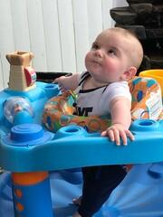 Fototapeta Cute Baby Boy Sitting In Baby Walker obraz