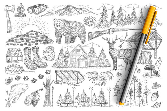 Accessories and tools of hunter doodle set. Collection of hand drawn gun, forest, binoculars, wild animals, house and footprints elements of hunting isolated on transparent background