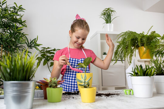 Young girl with a sincere smile on her face having fun with a plant in the flowerpot