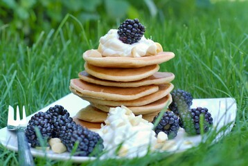Wall Mural - Whole grain pancakes with blackberries, cottage cheese on white plate