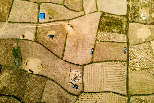 Aerial view, rural farmer's way of harvesting produce, Thailand