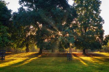 A wonderful warm sunrise on a summer morning
