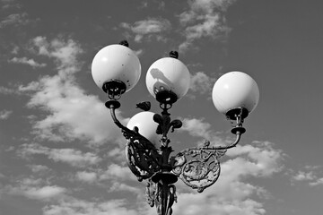 Italy: Pigeons on the lamppost. Fotomurales