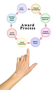 Eight components of award process