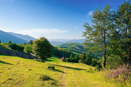 mountainous rural area in the morning. beautiful remote agricultural landscape in summer. trees and grassy fields on rolling hills
