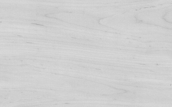 Crown cut end grain abstract white wood veneer