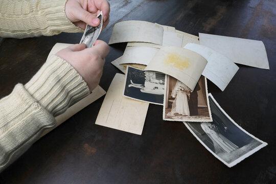 female hands fingering old photographs of 1950s, vintage monochrome photos, concept of genealogy, memory of ancestors, family tree, nostalgia, childhood, remembering