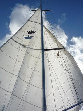 closeup of sail boat yacht main and genoa running downwind.