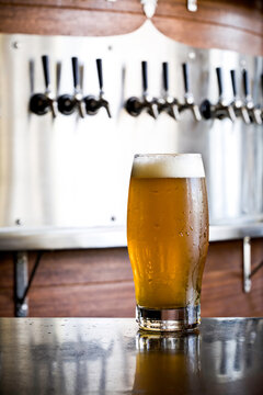 A freshly poured pint of beer stands tall in front of a row of taps behind the bar.