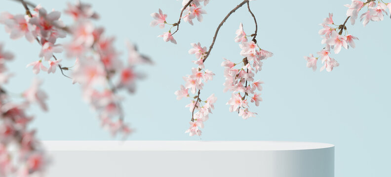 White product display podium with blossom flowers on blue background. 3D rendering