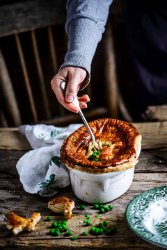 pie with vegetables and rabbit..style rustic.