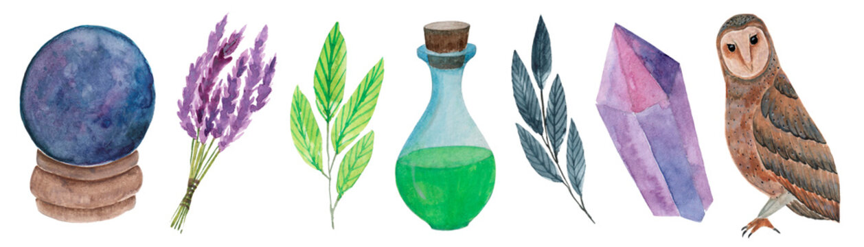 Watercolor magic clipart. Magic elements, a fortune-telling ball, an owl, a bottle of potion, crystal, lavender, twigs.