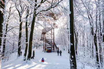 Wieżyca kaszuby wieża zima śnieg las