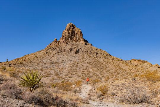 Sunny view of the beautiful landscape around Petroglyph Canyon Trail