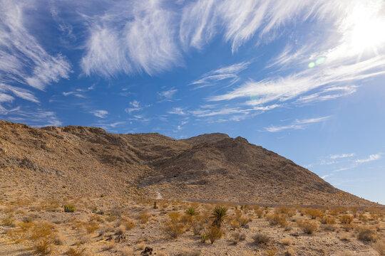 Nature landscape around the Lone Mountain