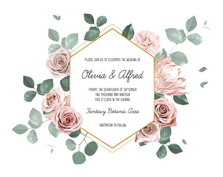 Eucalyptus and pale roses, protea, camellia vector design invitation frame