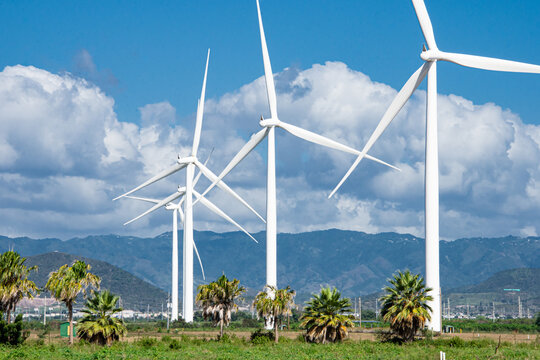 A wind farm in Puerto Rico generating clean, renewable energy.  Copy space.