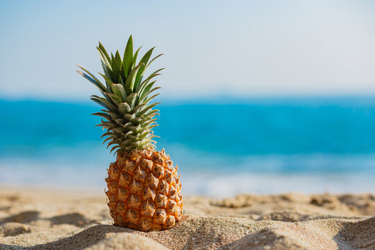 Fresh Pineapples on the beach in summer On the blurred ocean background
