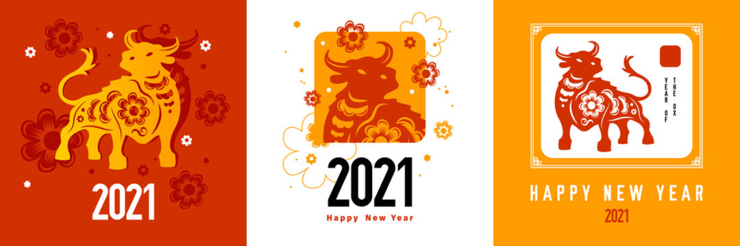 2021 Bull Design Concept
