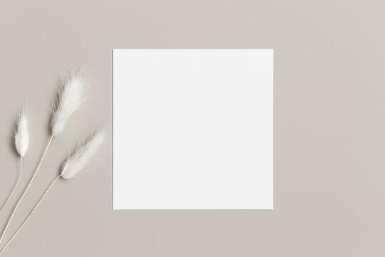 Square invitation card mockup with a lagurus on a beige table.