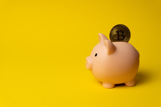 Pink piggy money box with coin of Bitcoin