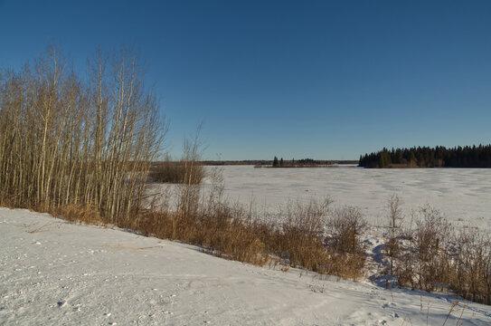 Astotin Lake Frozen on a Sunny Winter Day