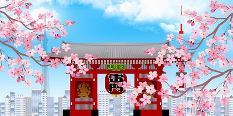 東京 桜 春 背景